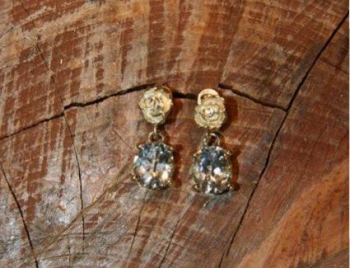 Gouden oorbellen met steen