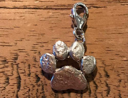 Zilveren hondenpootje met as erin verwerkt
